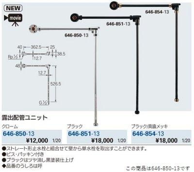 画像2: 水栓金具 カクダイ 646-850-13 露出配管ユニット [□]