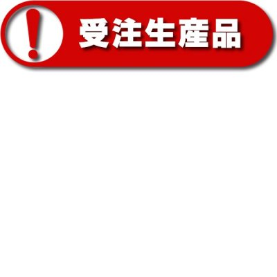 画像3: アイホン TD-J13 TD保守用インターホン ジャックプレート 受注生産品 [§∽]